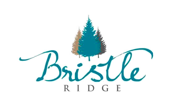 Bristle-Ridge-Logo-Main.jpg